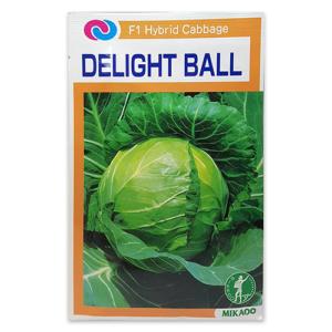 DELIGHT BALL